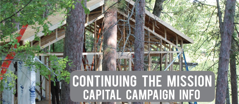 capitol-campaign-01